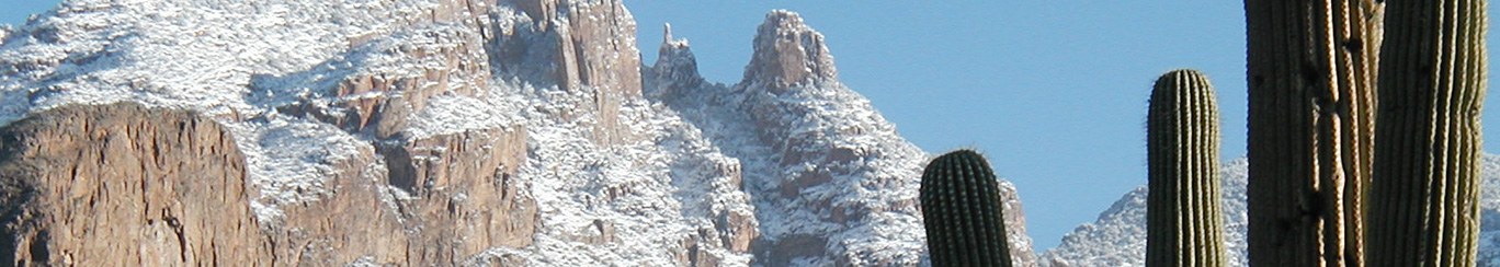 snowy mountains and saguaros